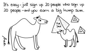 cartoon camels