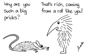 cartoon rat and echidna